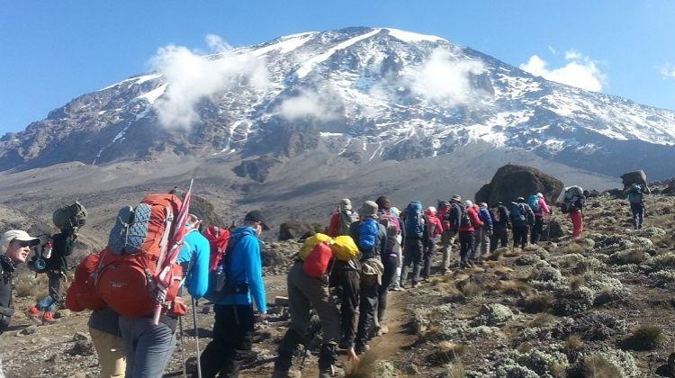 Trek Mt. Kilimanjaro: Lemosho route via Crater Camp