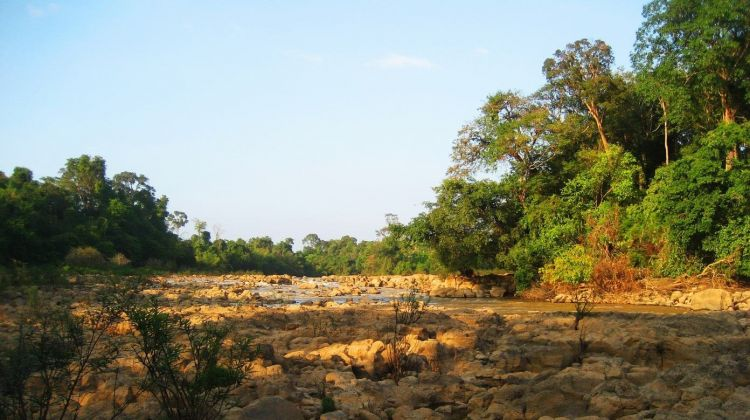 Two-day Visit Nam Cat Tien National Park from Ho Chi Minh