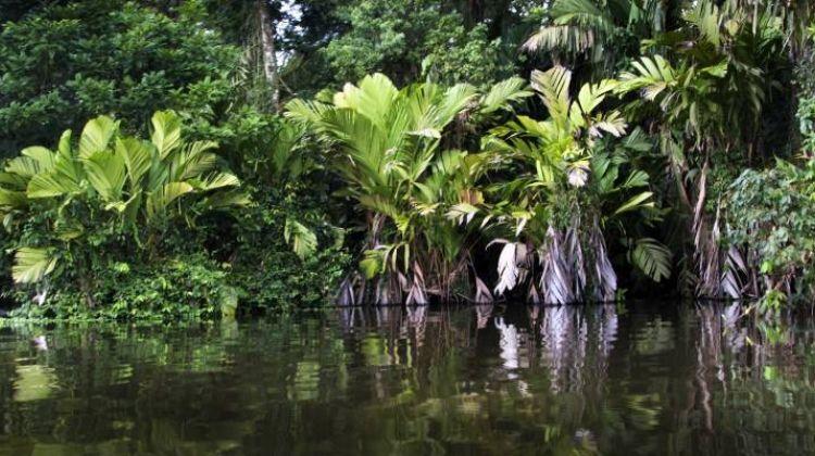 Ultimate Costa Rica - 15 days