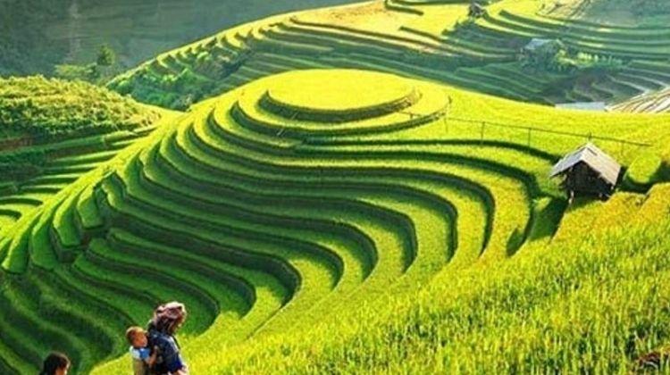 Ultimate Vietnam
