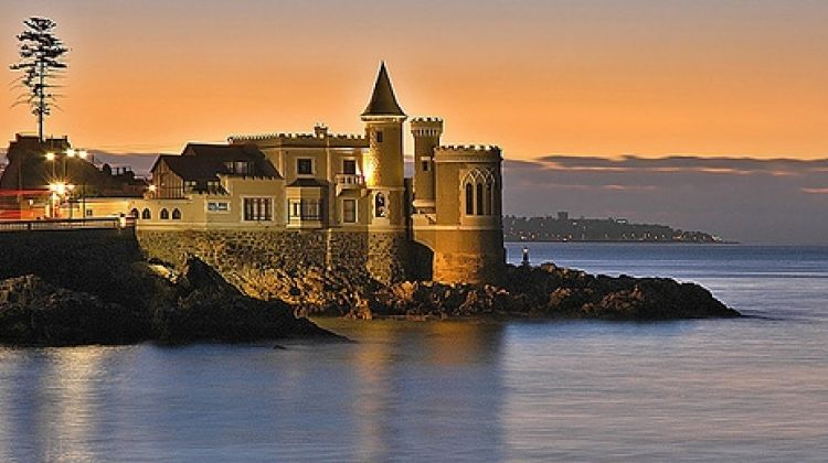 Valparaiso and Viña del Mar Tour - Stop in a Vineyard