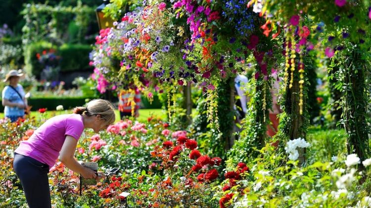Victoria butchart gardens tour by west coast sightseeing - Butchart gardens tour from victoria ...