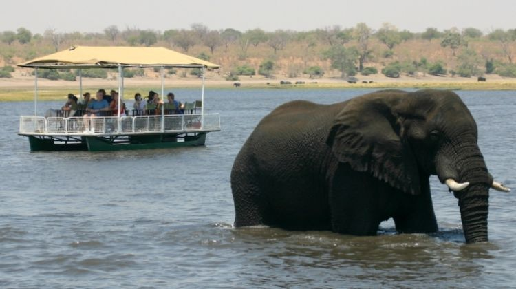 Victoria Falls & Chobe National Park 4 D/ 3 N Package