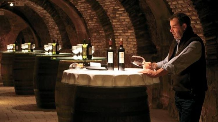 Vitoria & Rioja Area Wine Tour