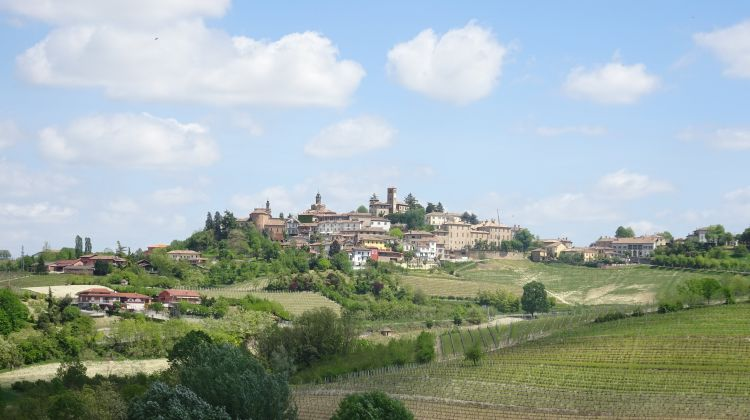 Walking Holiday in the Piedmont Region