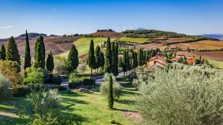 Walking in Italy: Tuscany
