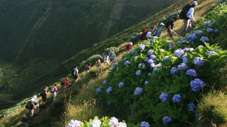 Free Walking Tour Ponta Delgada