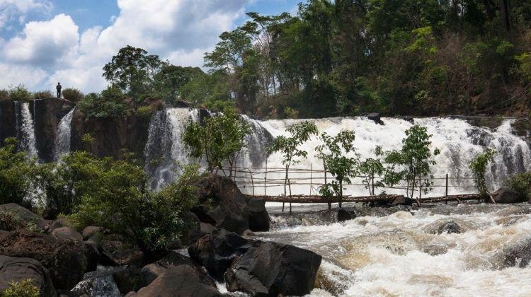 Wilds of Cambodia