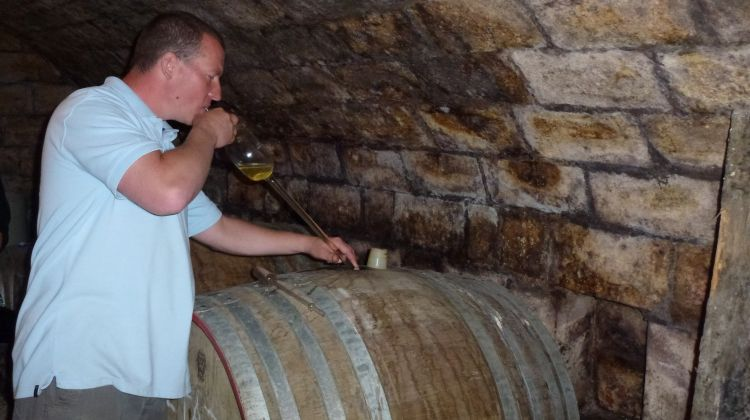 Wine Country Tour & WineTasting With Dinner Near Budapest