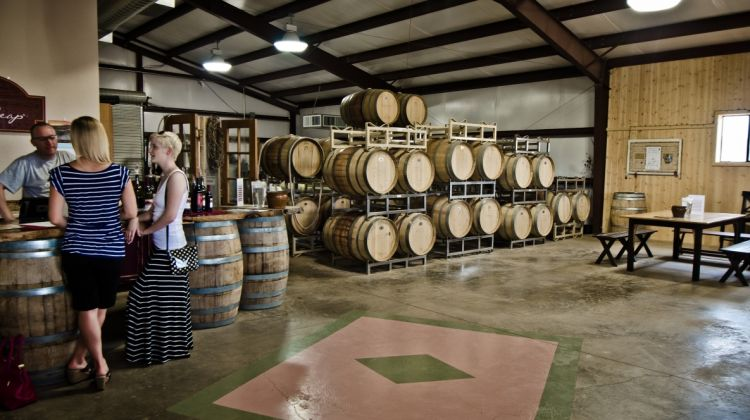 Wine-Tasting Tour in Elgin
