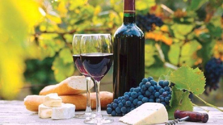 Wine Tour in Kakheti