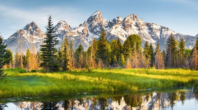 Yellowstone and Grand Teton Adventure