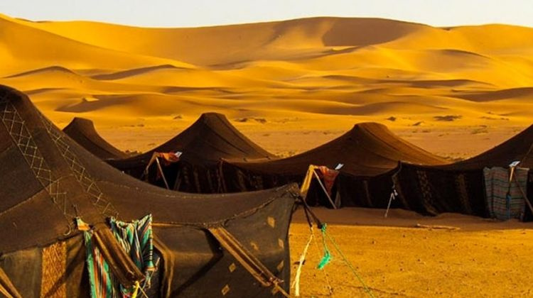 Zagora & Merzouga Desert Private Adventure 4D/3N