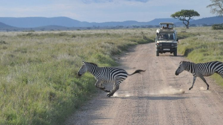 Zanzibar to Nairobi