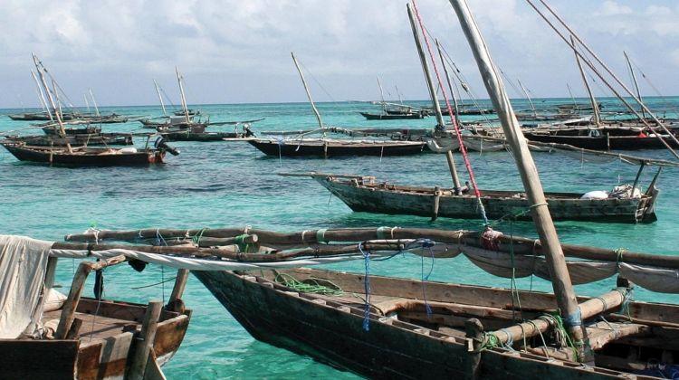 Zanzibar to Vic Falls